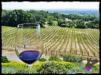 5_may_2012_wine_tast